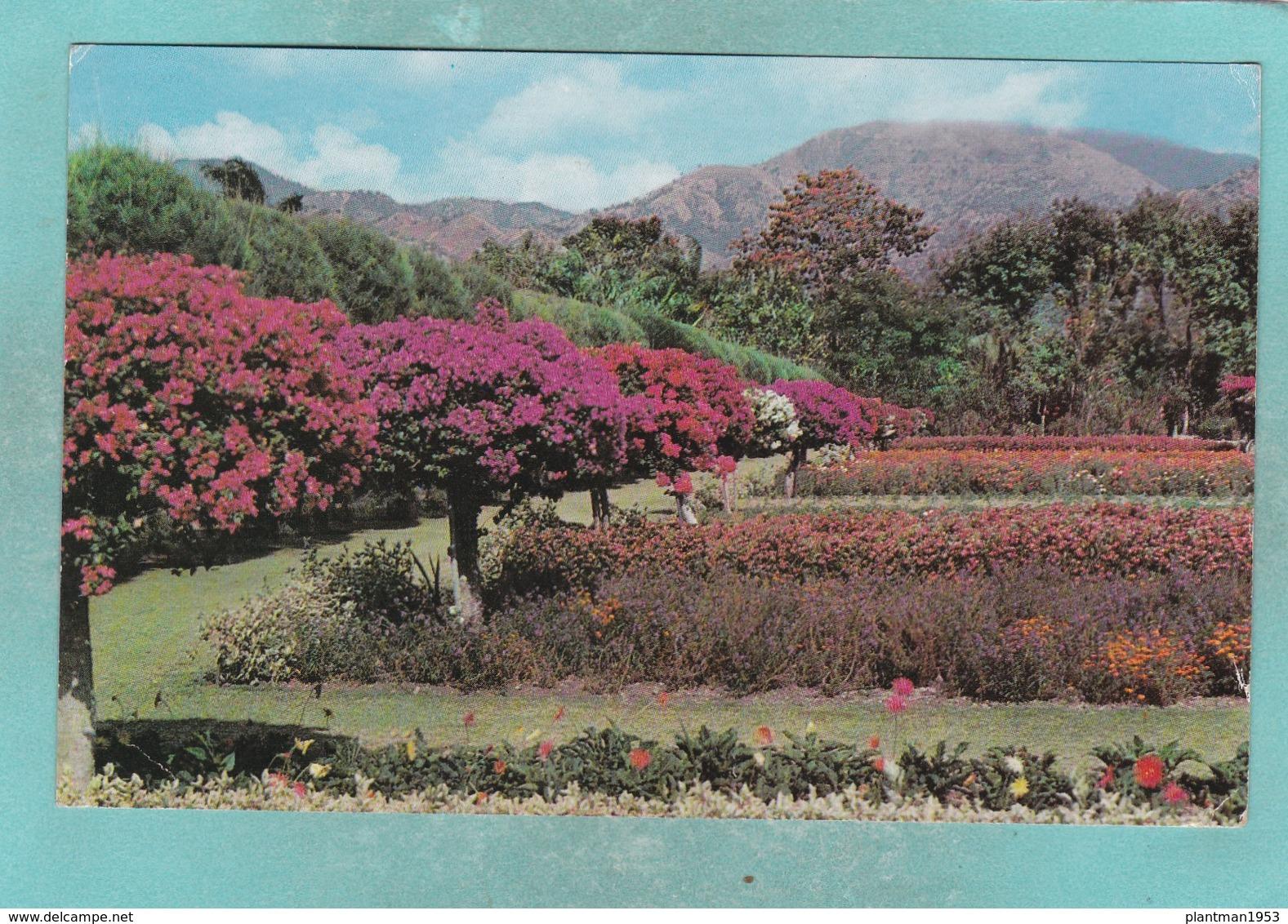 Small Post Card Of Gardens,Hope,Kingston,Jamaica,V99. - Jamaica