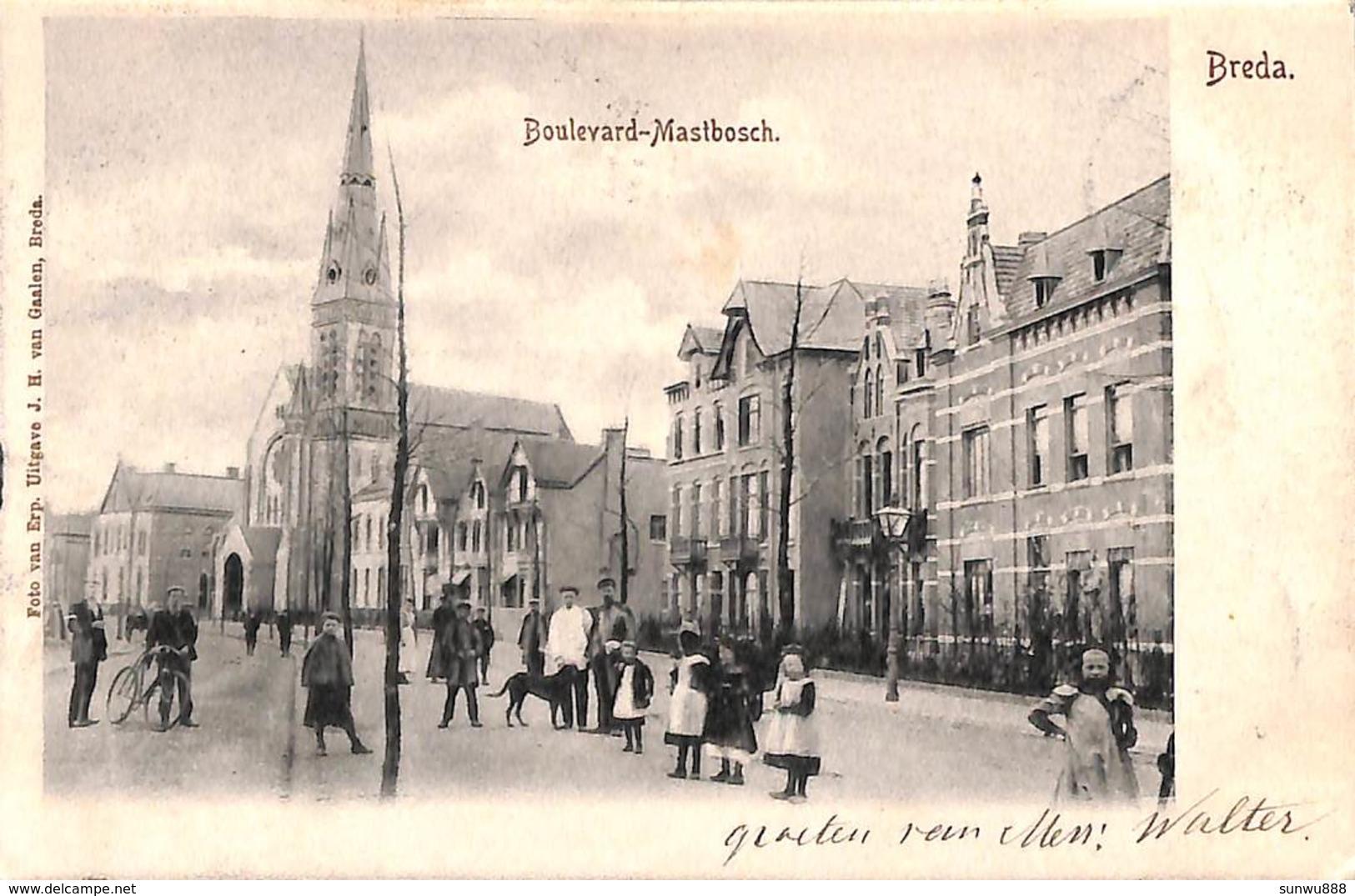 Breda -  Boulevard Mastbosch (animatie, Foto Van Erp, Uitg. J H Van Gaalen 1902) - Breda