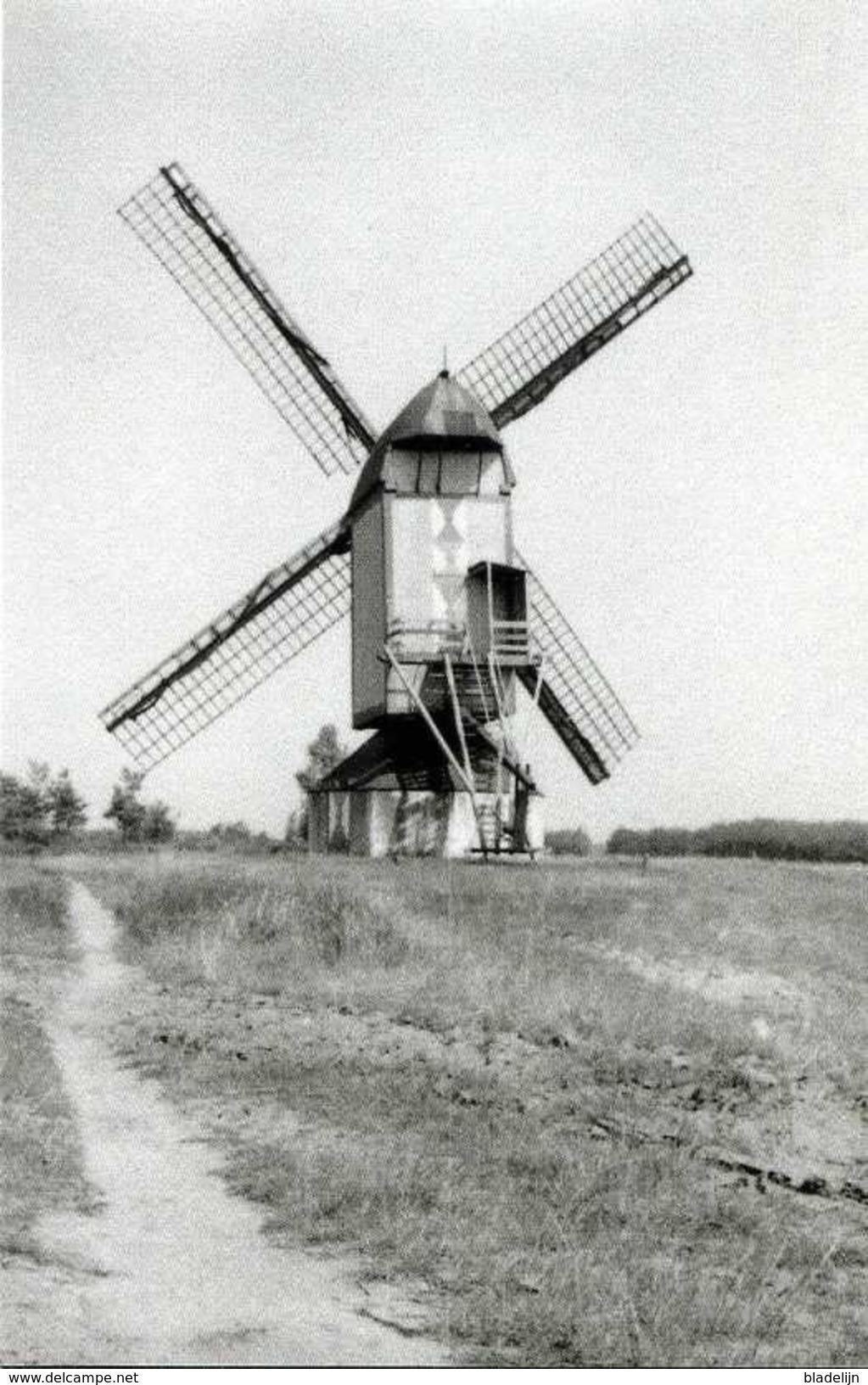 SINT-OEDENRODE - Meierijstad (N.Br.) - Molen/moulin - De Verdwenen Koeveringse Standerdmolen Omstreeks 1930 - Zonder Classificatie