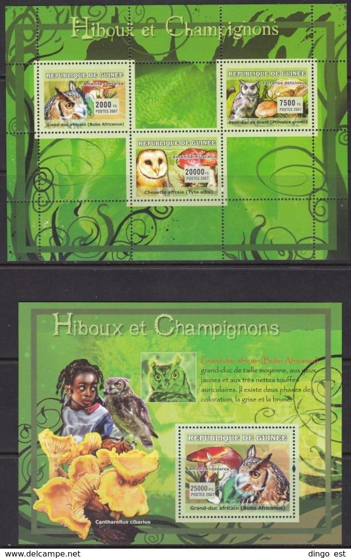 Guinea, Fauna, Birds, Owls, Mushrooms MNH / 2007 - Vögel