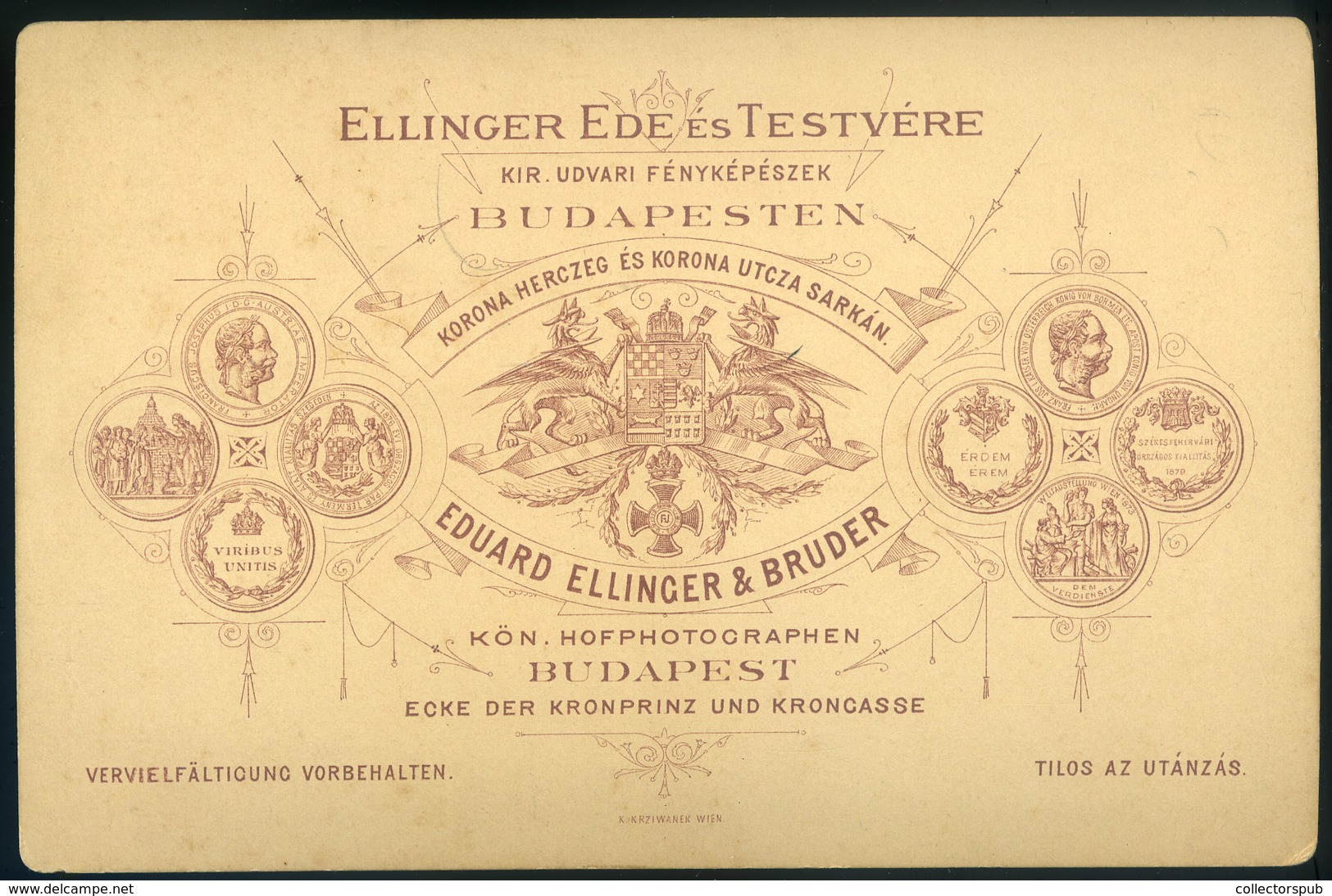 BUDAPEST 1880. Ca. Ellinger Ede és Testvére : Hoffmann Pál 1830-1907. Jogász, Egyetemi Tanár, Az MTA Tagja, Lawyer, Univ - Foto's