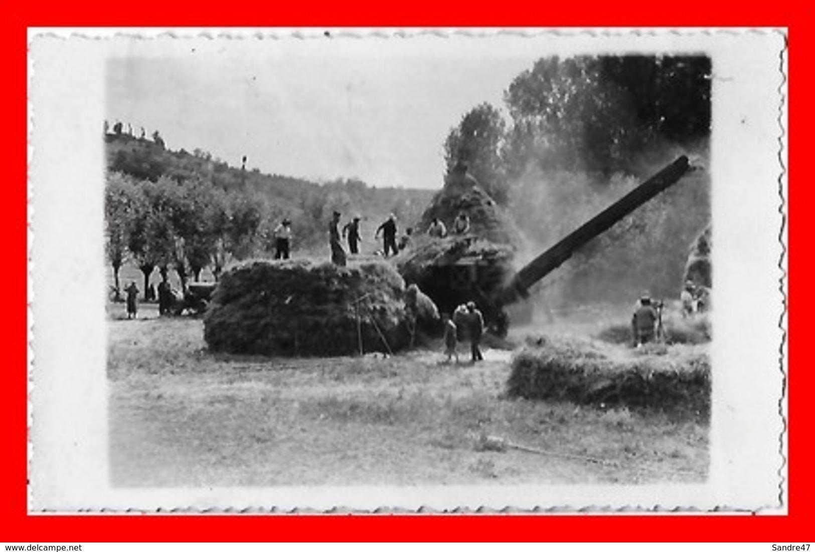 CPSM/pf  AGRICULTURE.  Battage Du Blé, Animé, Tracteur. Carte Photo...A805 - Landwirtschaftl. Anbau