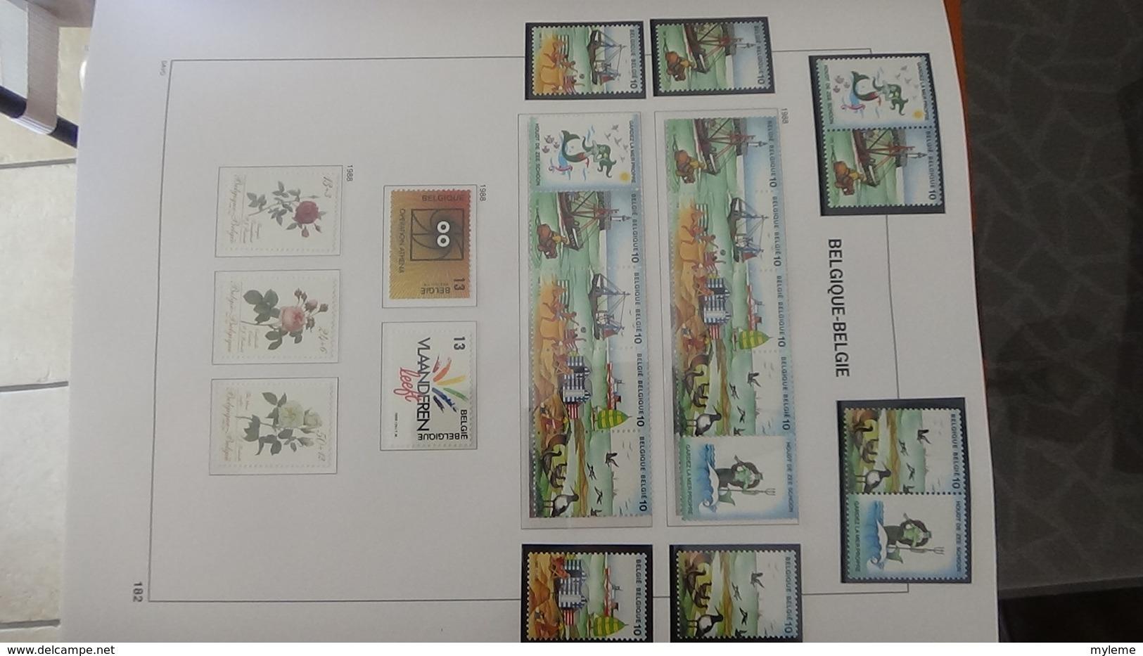 Grosse Collection BELGIQUE En DAVO De 1985 à 1998 En Blocs, Carnets Et Timbres ** . Bien Suivie A Saisir !!! - Stamps