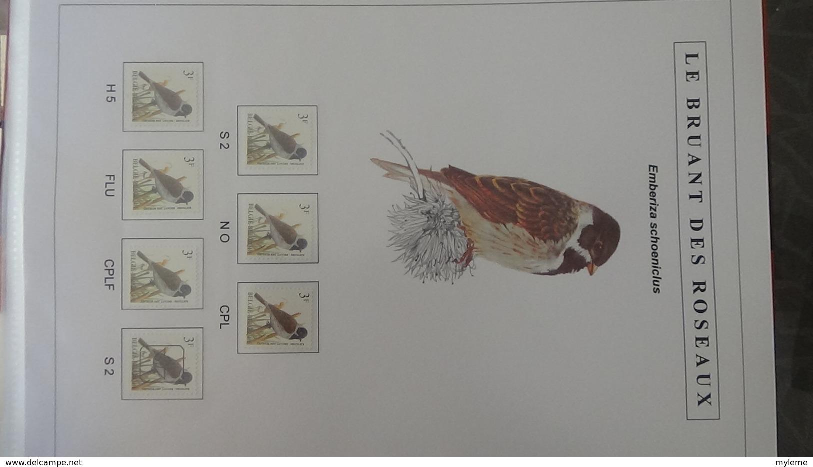 Belle étude Sur Les Oiseaux Par L'artiste André BUZIN. Super Travail En Timbres Et Blocs ** A Saisir !!! - Timbres