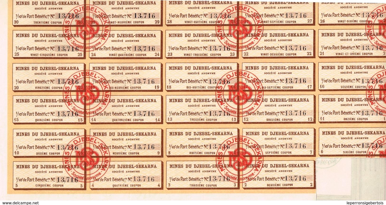 Ancien Titre - MInes Du Djebel-Sekarna - Société Anonyme - Titre De 1921 - Déco - Mines