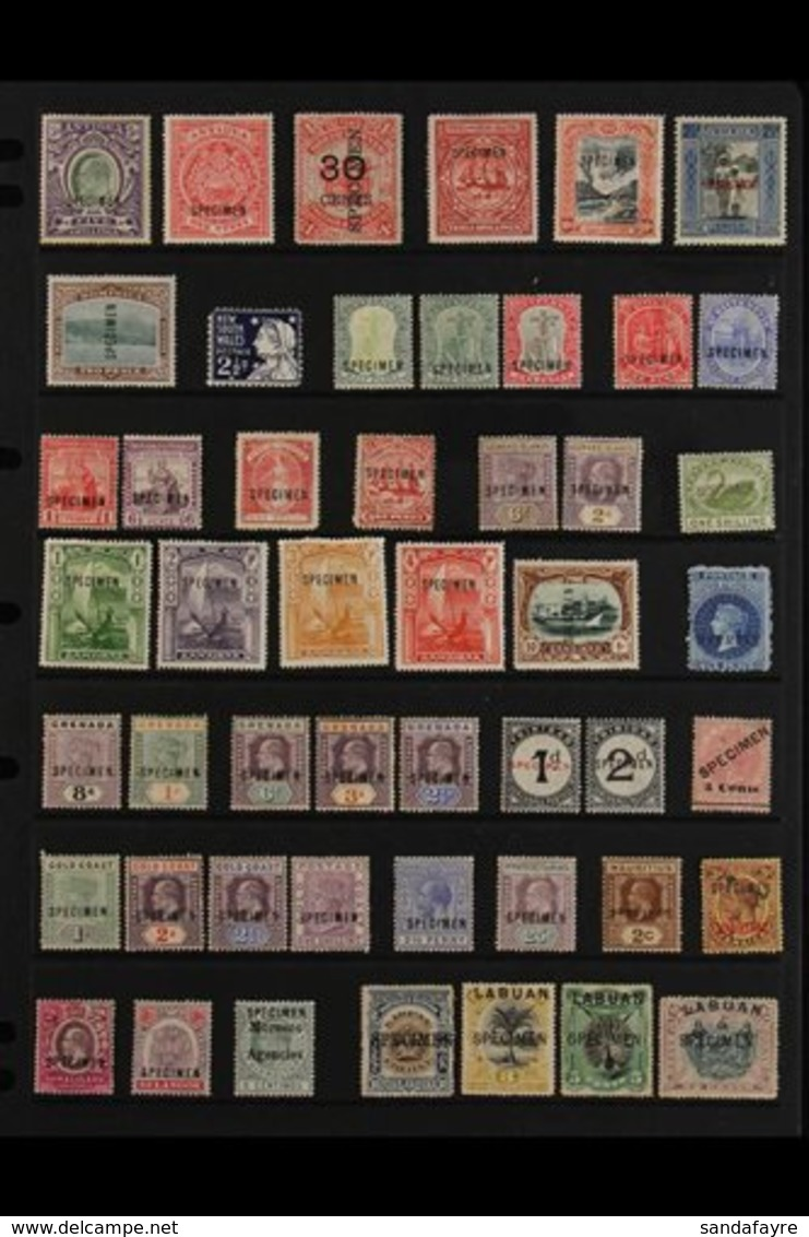 """BRITISH COMMONWEALTH """"SPECIMEN"""" OVERPRINTS 1880's-1920's All Different Collection Of Mint Stamps With """"Specimen"""" Overpri - Unclassified"""