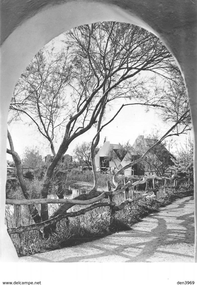 Les SAINTES-MARIES-de-la-MER - Camargue - Vue Sur Les Cabanes - Résidence Hôtelière Le Pont Des Bannes - Saintes Maries De La Mer