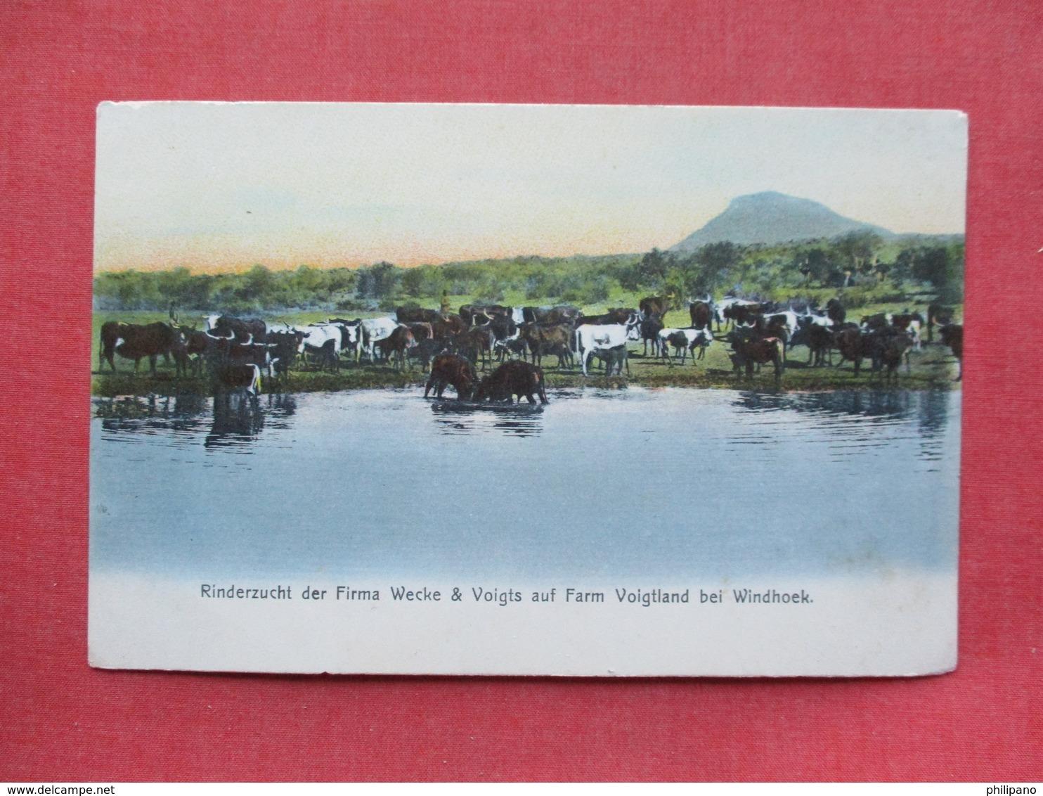 AFRIQUE -- D.S.W. AFRIKA   Windhuk  >   Ref 3405 - Postcards