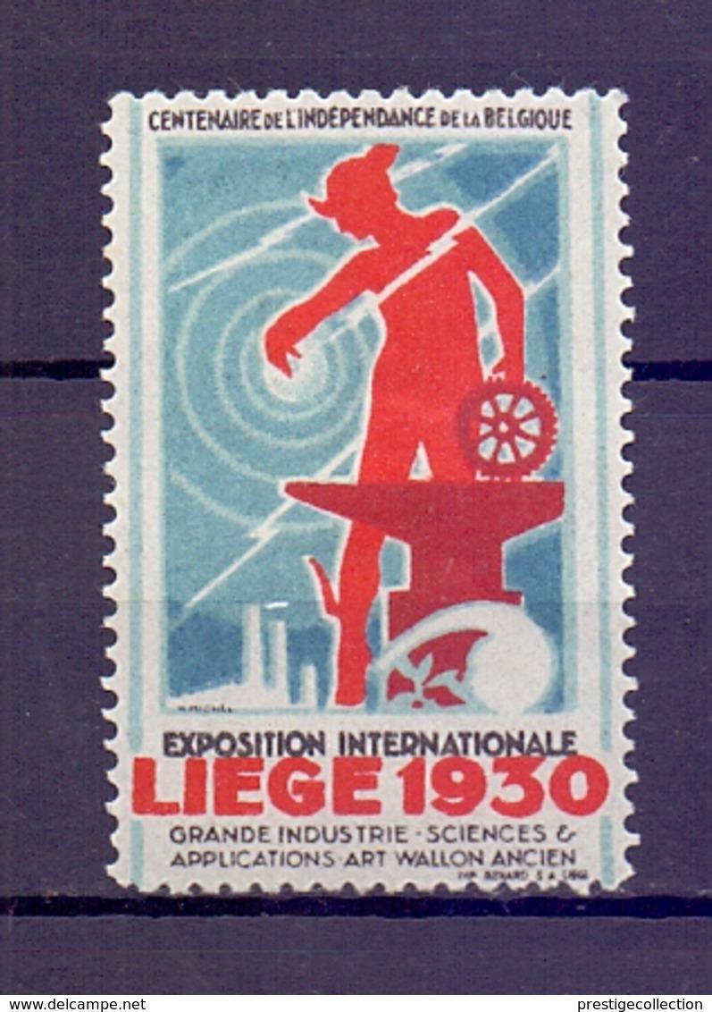 CINDERELLA  ERINOFILO International Exposition LIEGE  1930  (GIUGN1900B102) - Erinnofilia