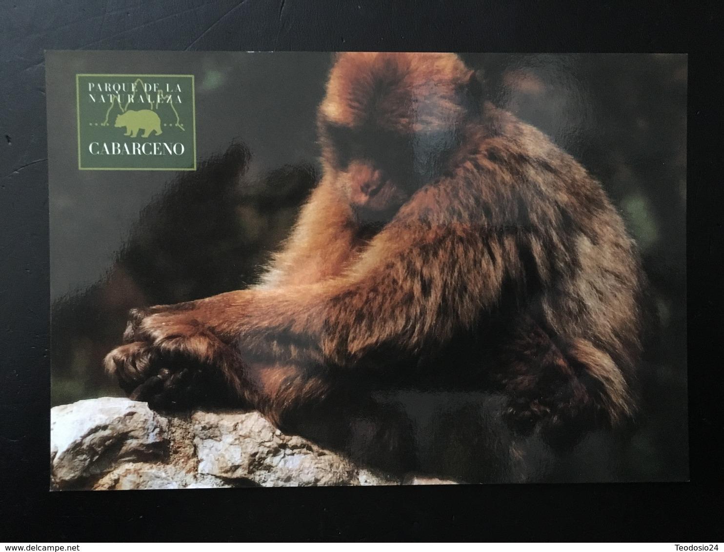 Mono - Monos