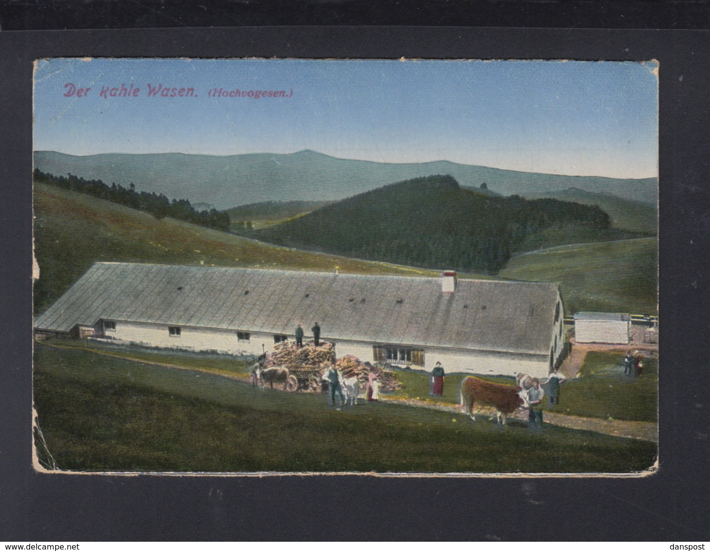 CP Alsace Der Kahle Wasen 1917 - Alsace