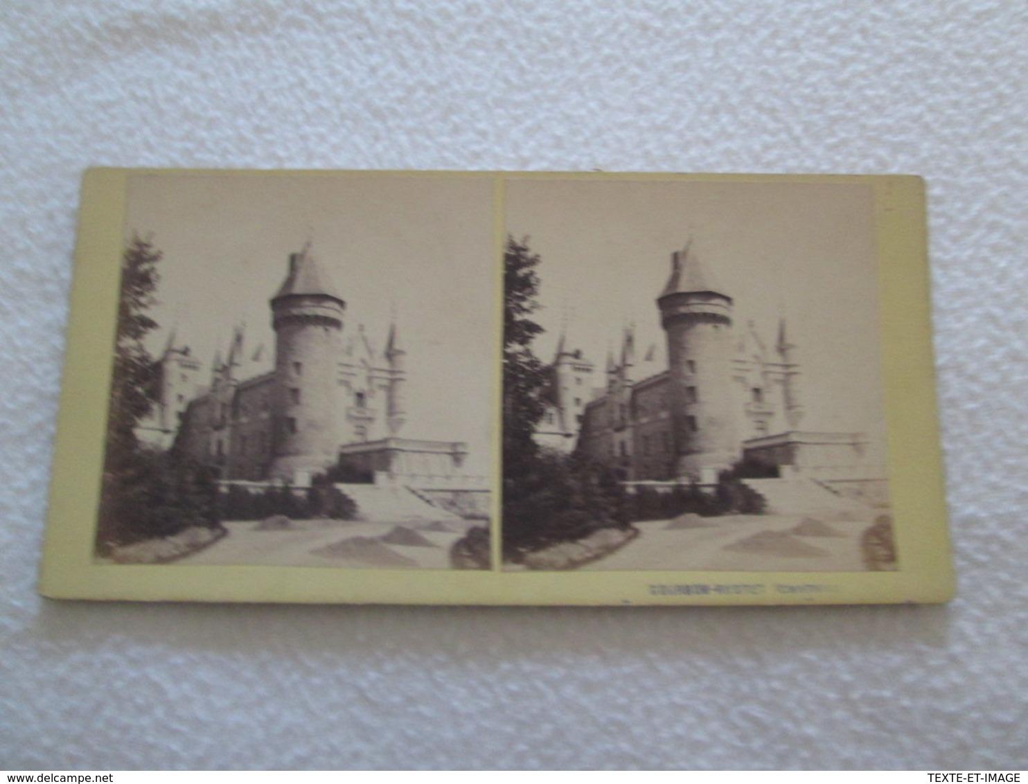PHOTOGRAPHIE STEREOSCOPIQUE - Château De BOURBON BUSSET [cliché 180X85 Circa 1880] - Photos