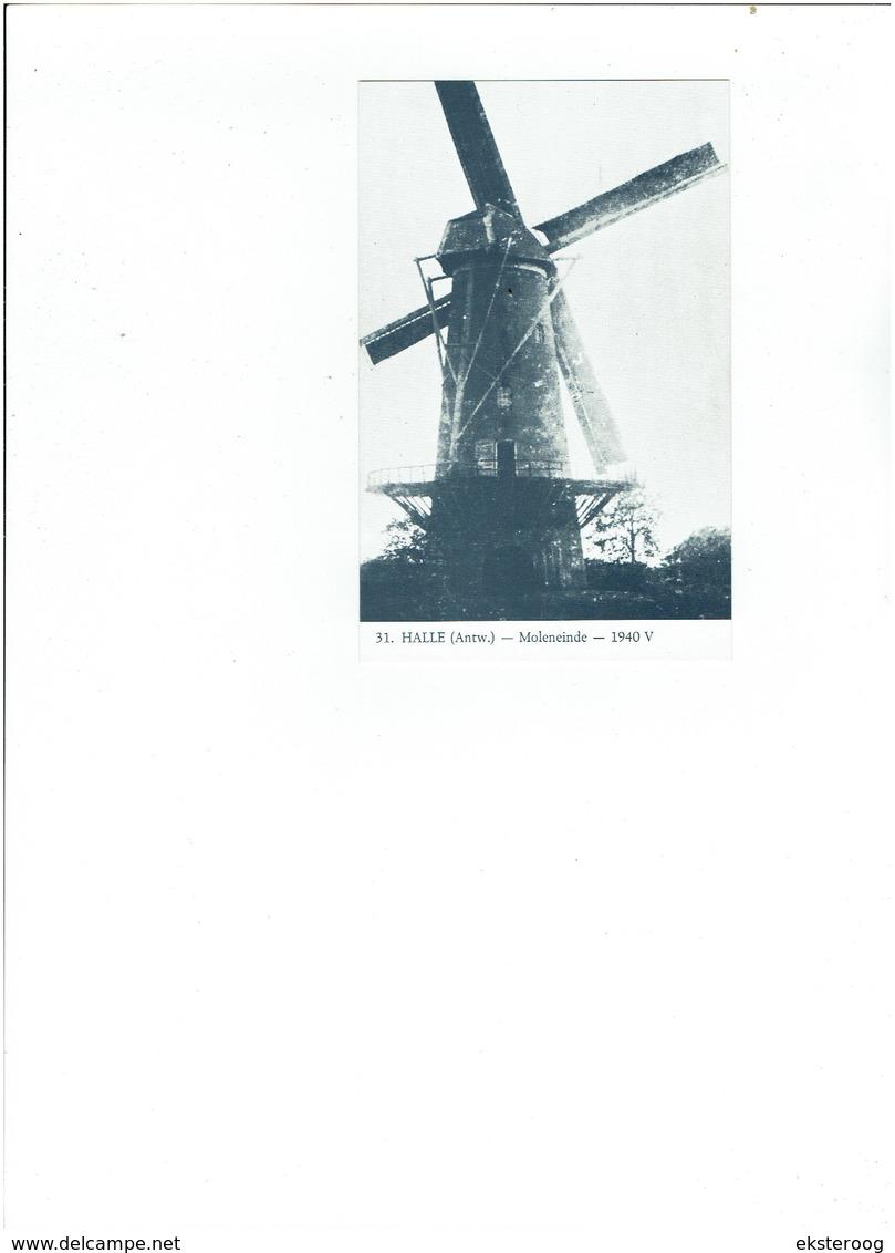 Halle 31  -moleneinde 1940 - Zandhoven