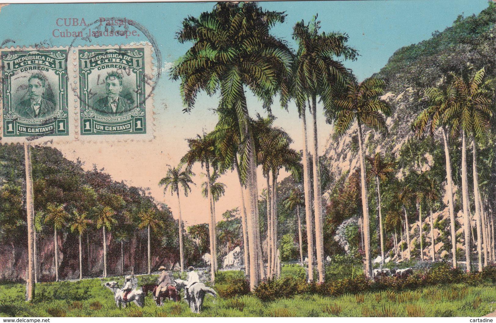 CUBA - Cuba Paisaje / Cuban Landscape - 1914 - Cuba