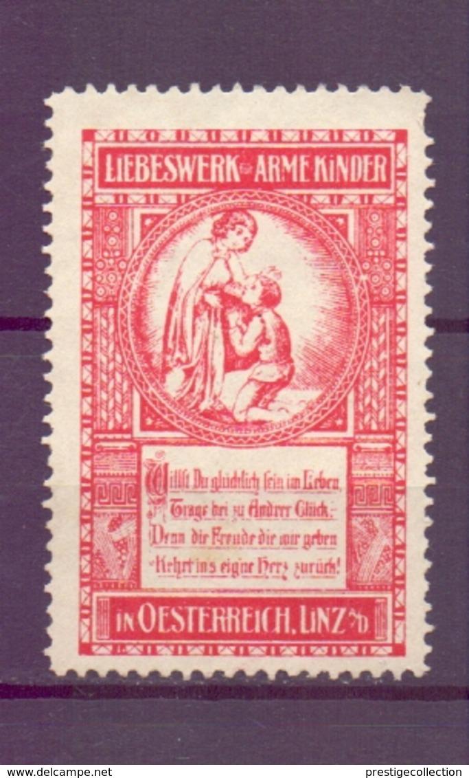 CINDERELLA  ERINOFILO OSTERREICH LINZ LIBESWERK ARME KINDER     (GIUGN1900B137) - Erinnofilia