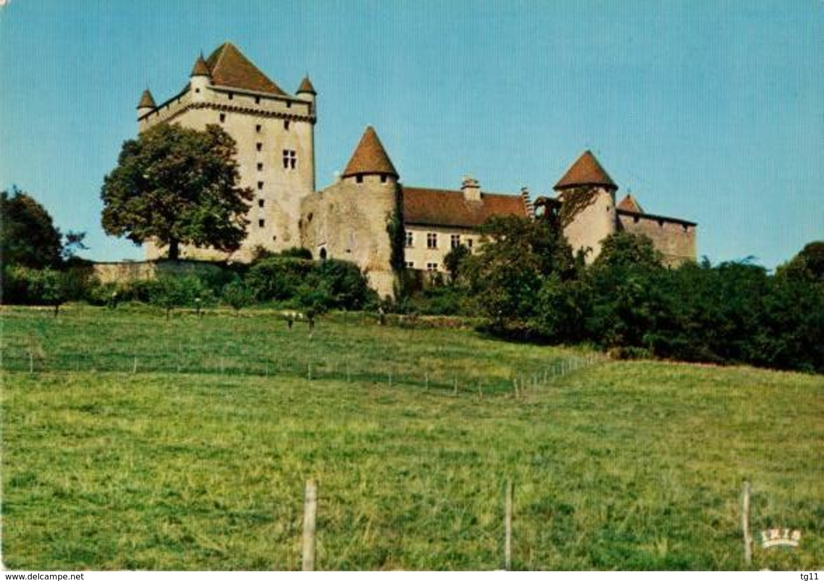 39 - CHÂTEAU DU PIN - Frankreich