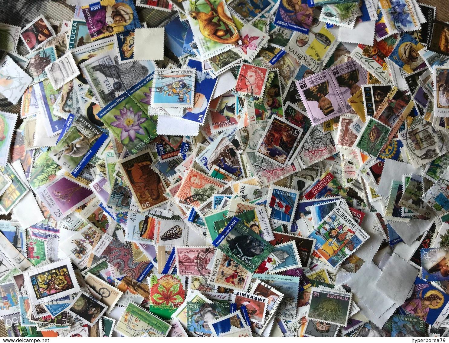 1500+ Worldwide Kiloware Stamps Off Paper 150 Grams - Sellos