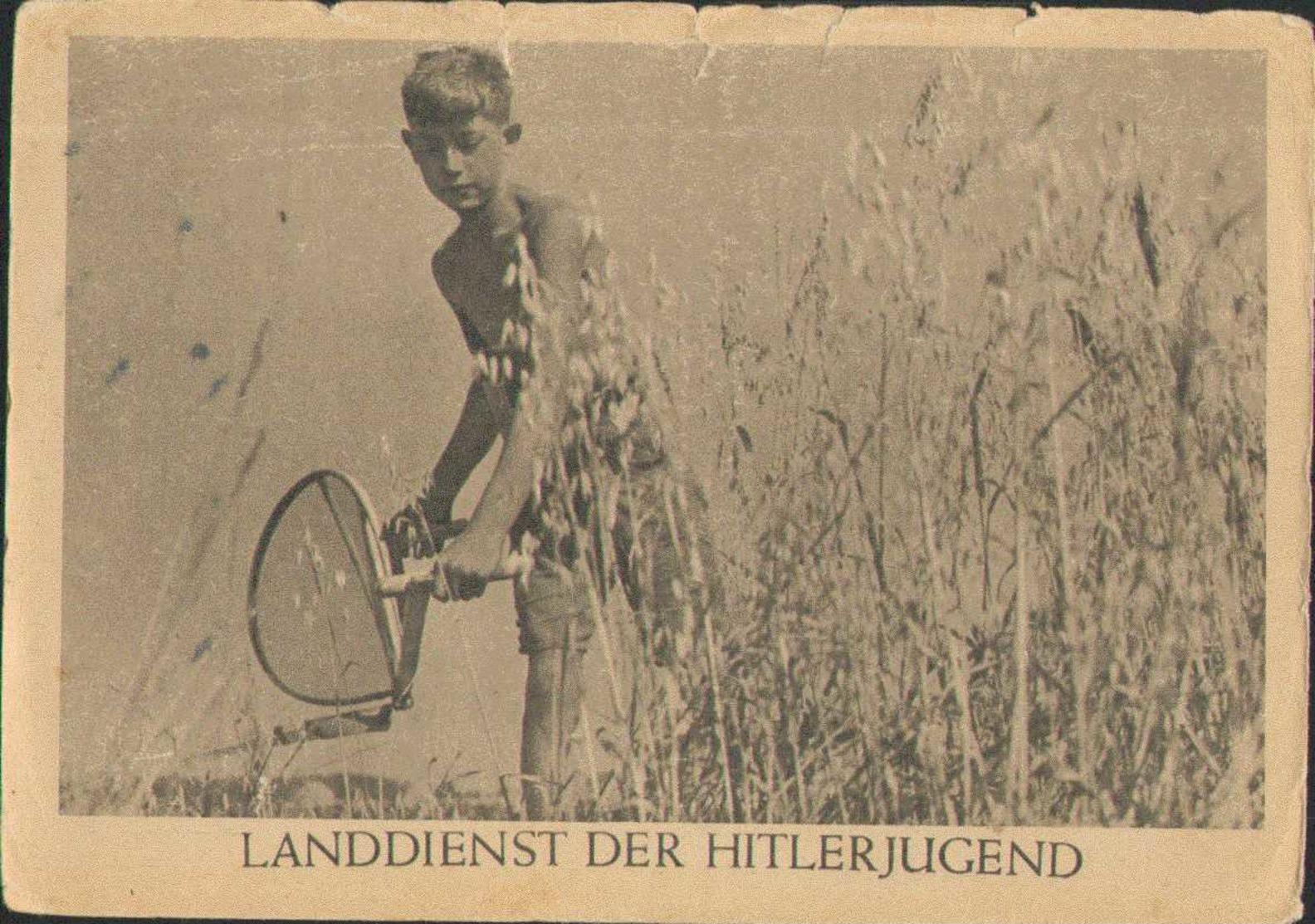 Landdienst Der Hitlerjugend, Propaganda-Postkarte, Drittes Reich - Weltkrieg 1939-45