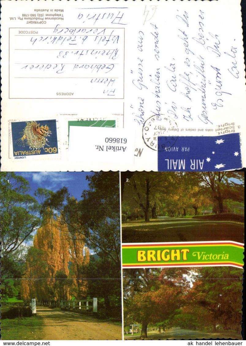 618660,Mehrbild Ak Bright Victoria Park Bäume Brücke Australia - Ansichtskarten