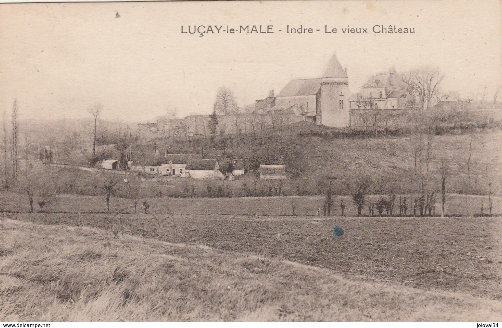 Indre - LUCAY Le MALE - Le Vieux Château - ( Vue Générale ) - Francia