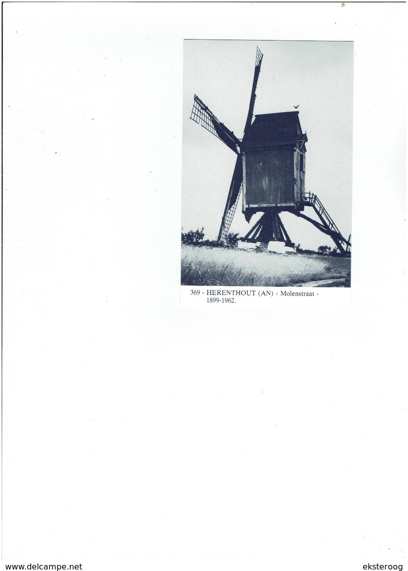 Herenthout 369 - Molenstraat - 1899-1962 - Herenthout