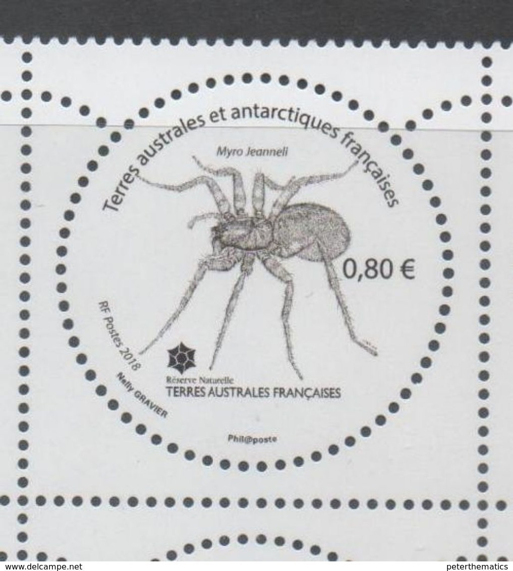 TAAF, FRENCH ANTARCTIC, 2018, MNH , SPIDERS, 1v - Spiders