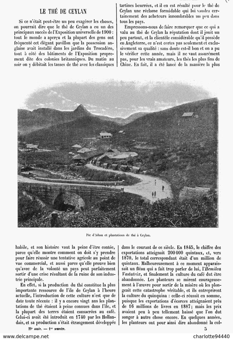 LE THE De CEYLAN 1901 - Other