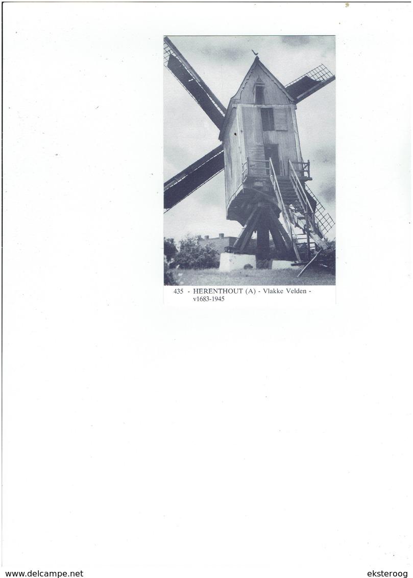 Herenthout 435 - Vlakke Velden 1683-1945 - Herenthout