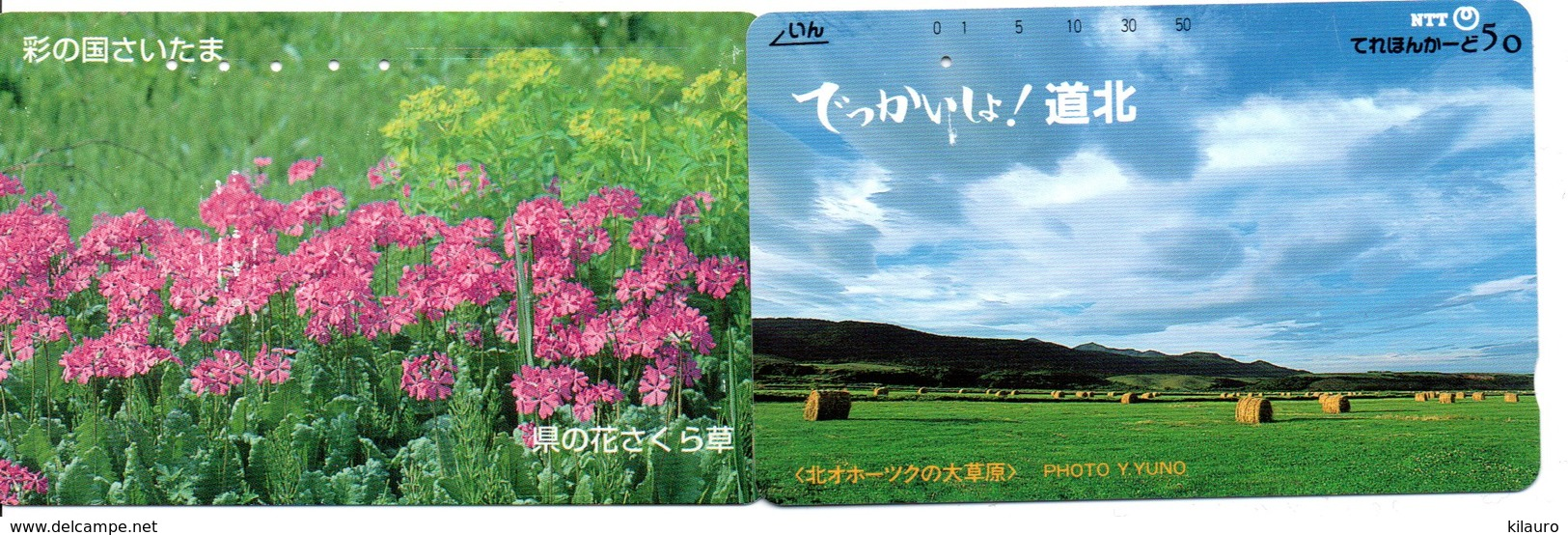 2 Télécartes Japon Japan  Fleur Flower  Phonecard (D 673) - Fleurs