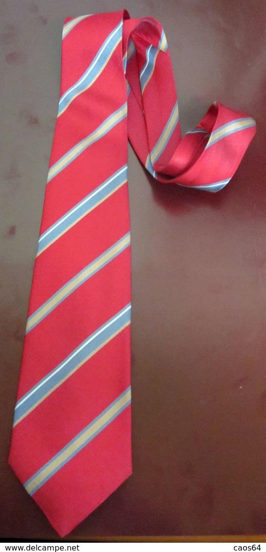 CRAVATTA PIERRE CARDIN  SETA NATURALE 100 %  PARIS VINTAGE - Cravatte