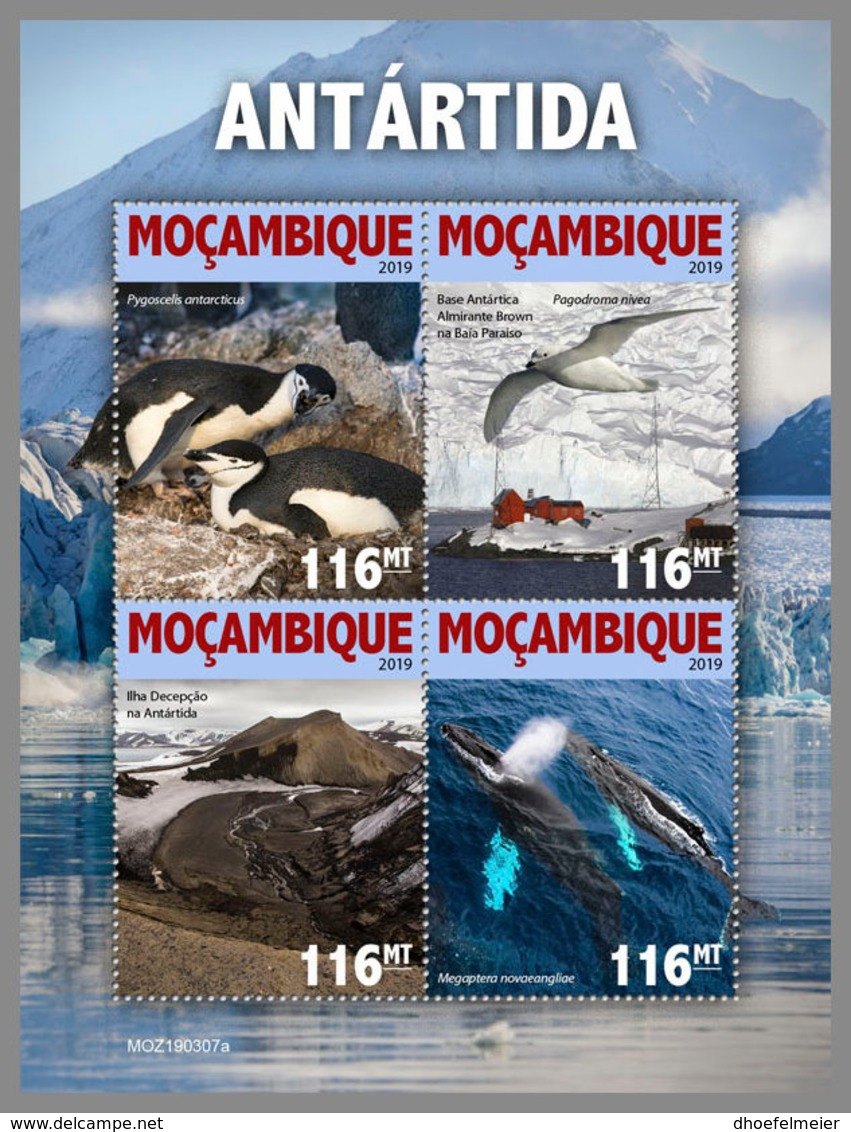 MOZAMBIQUE 2019 MNH Antarctica Antarktis Südpol Antarctique M/S - OFFICIAL ISSUE - DH1924 - Antarctic Wildlife