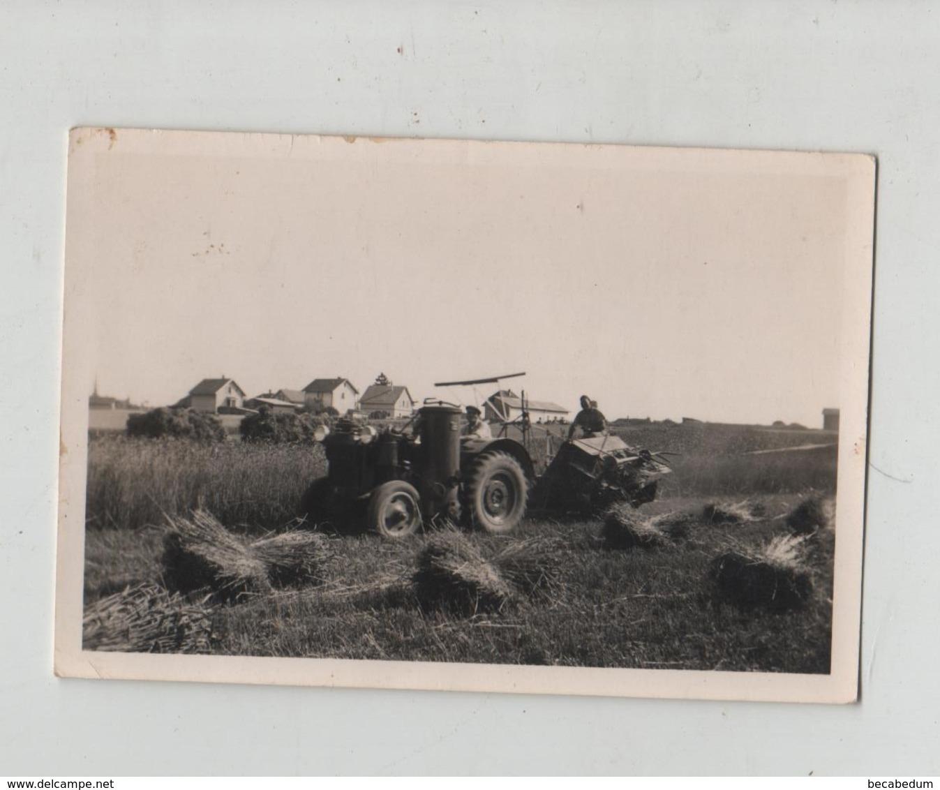 Photo Cortaillod Neuchatel Tracteur Agriculteur à Identifier - Berufe