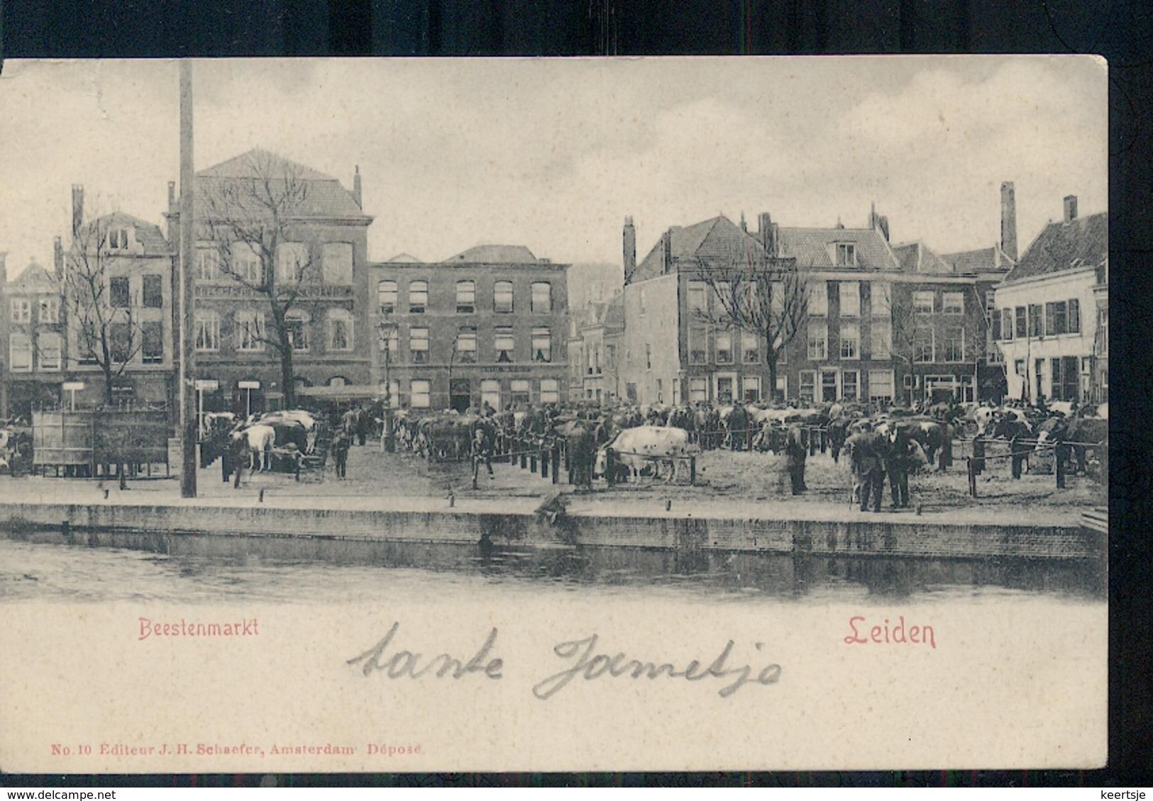Leiden - Beestenmarkt - 1900 - Leiden