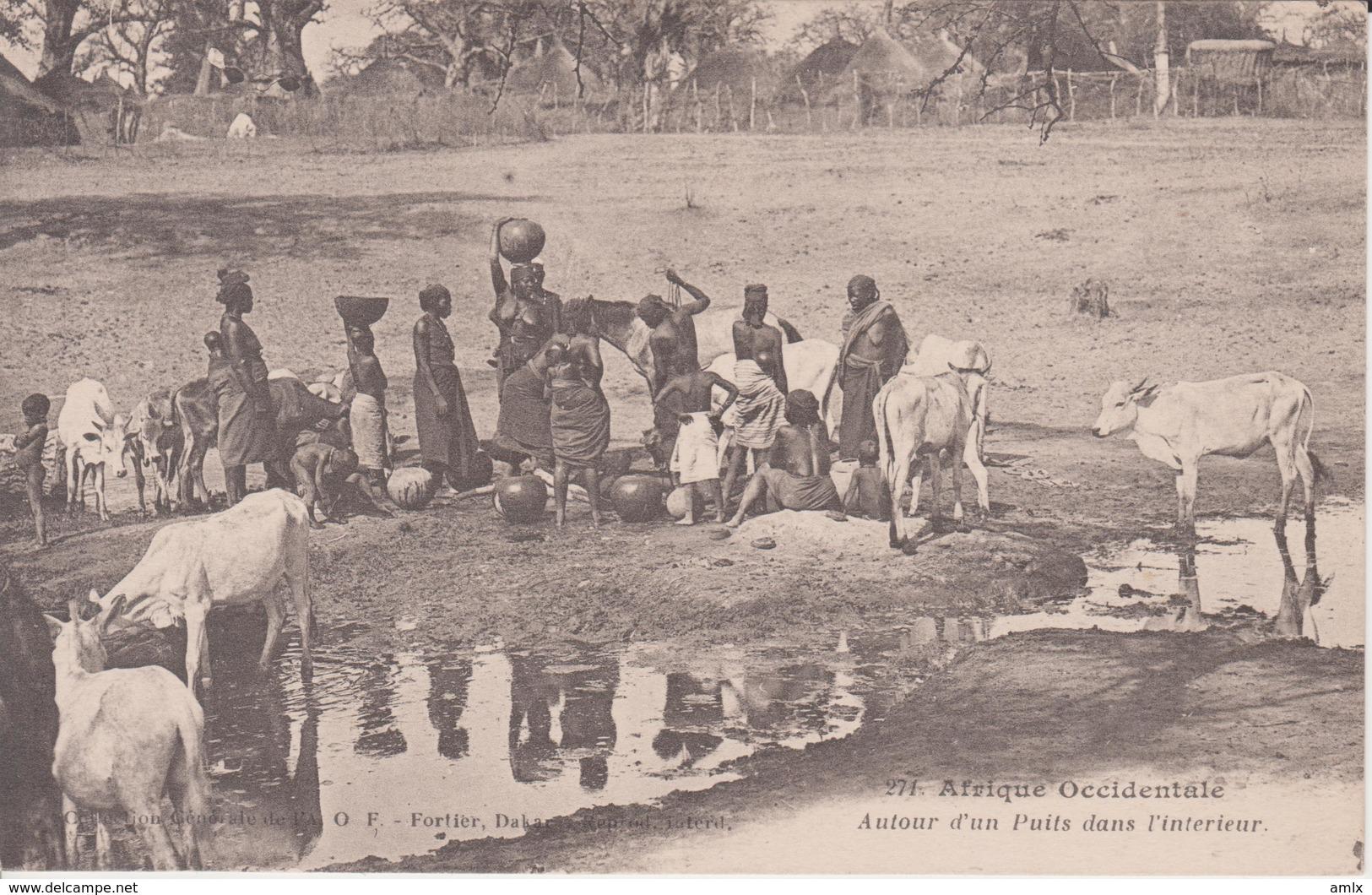 Afrique Occidentale. Femmes Autour D'un Point D'eau. Non écrite. Dos Blanc. Fortier. Tbe - Postcards