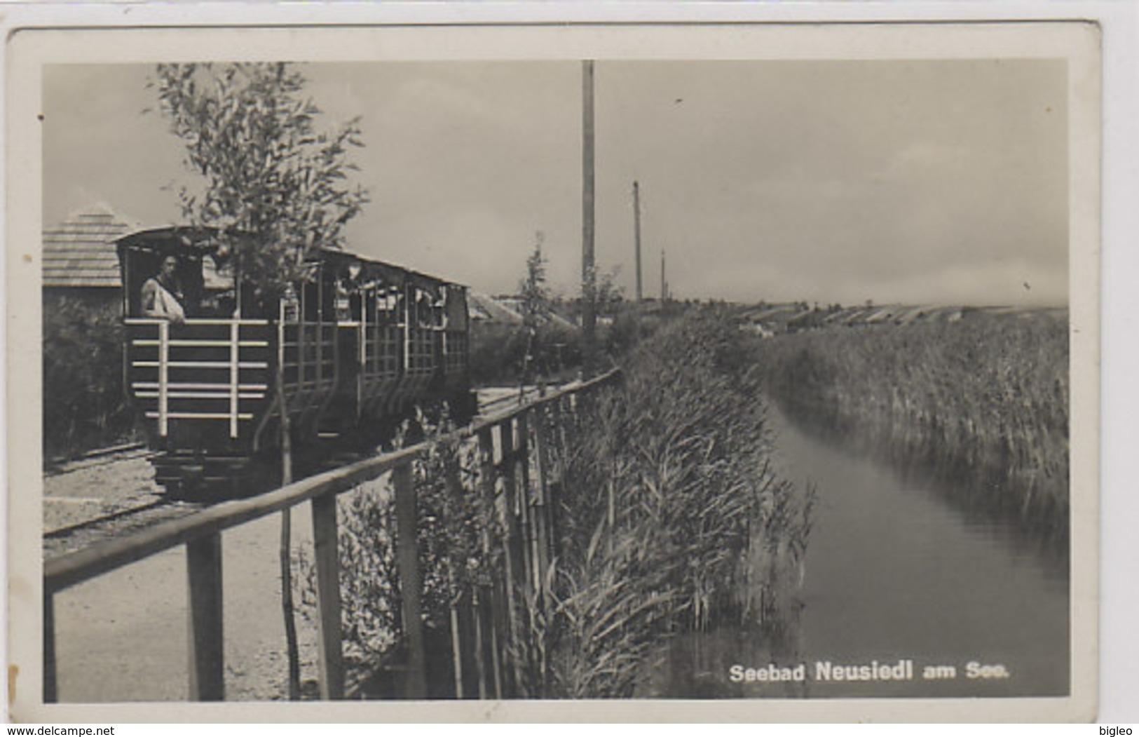 Bahn Bei Seebad Neusiedl - Fotokarte        (A-91-100915) - Neusiedlerseeorte