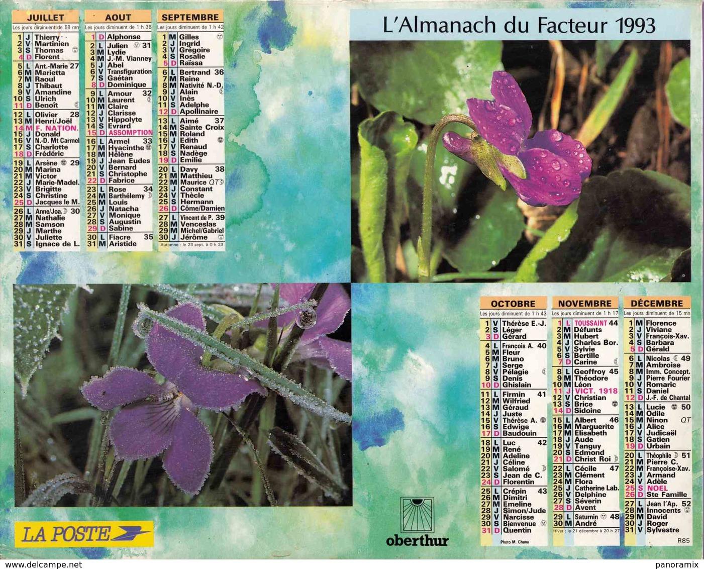 °° Calendrier Almanach La Poste 1993 Oberthur - Dépt 72 - Fleurs - Grand Format : 1991-00