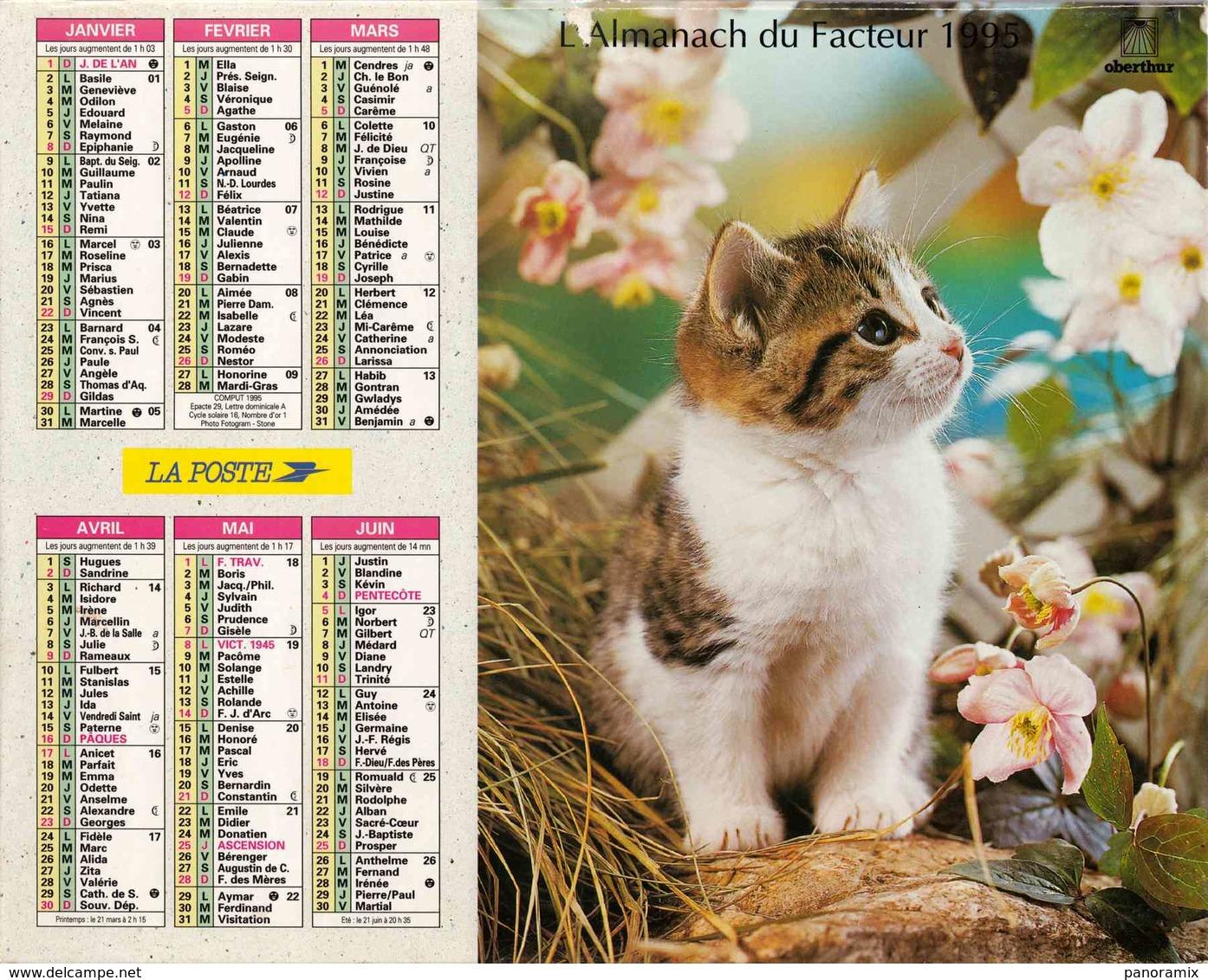 °° Calendrier Almanach La Poste 1995 Oberthur - Dépt 72 - Chatons - Calendriers
