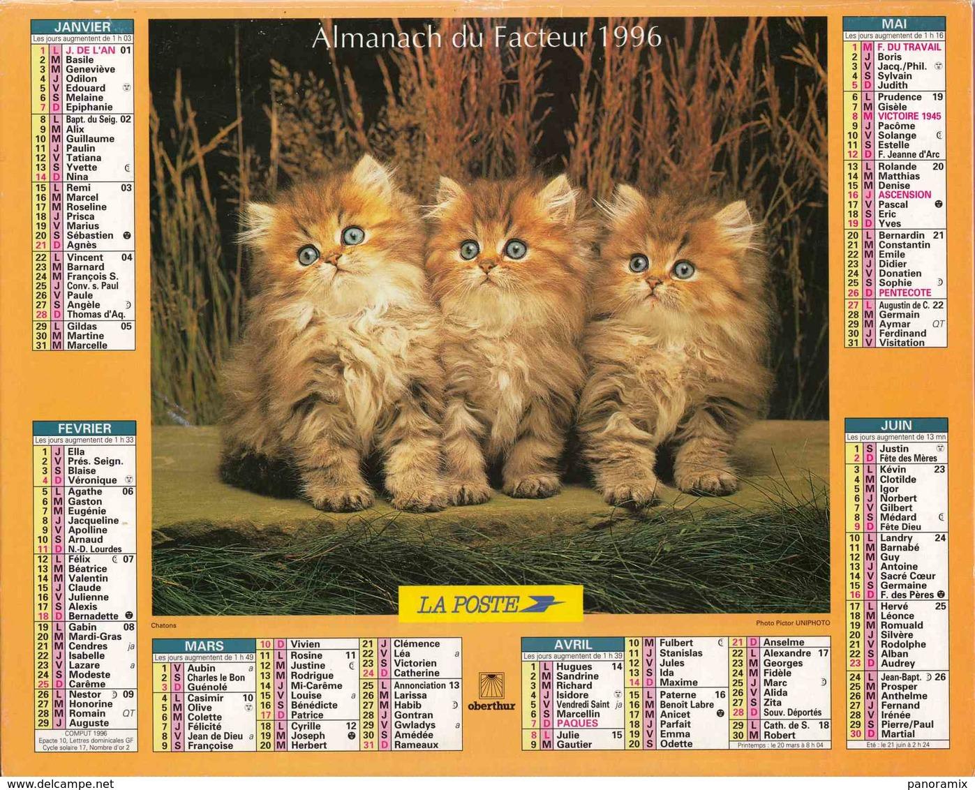°° Calendrier Almanach La Poste 1996 Oberthur - Dépt 72 - Chatons - Calendriers