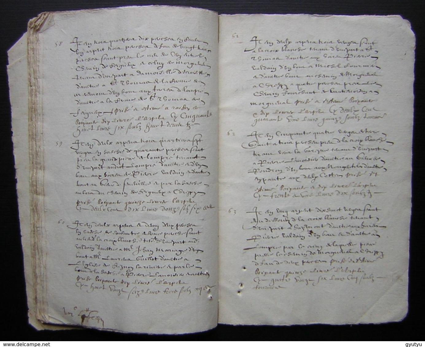 1620 Manuscrit De 54 Pages Désignation Des Terres De Mr  Charmoluë Au Terroir De Mermont (Crépy  En Valois) - Manuscrits