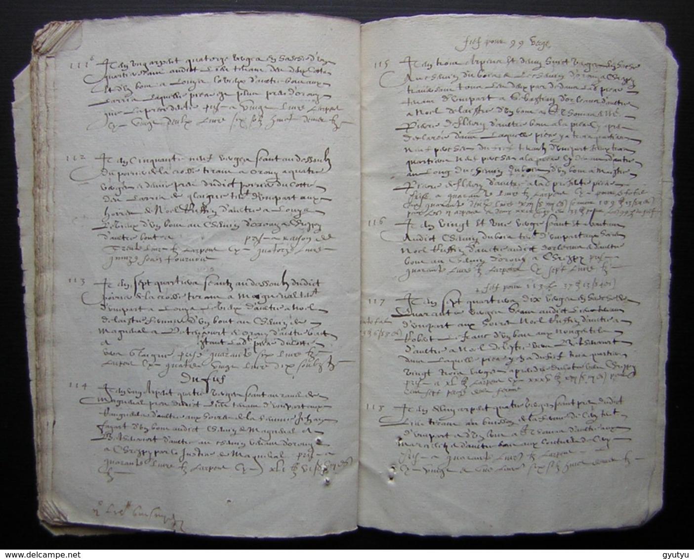 1620 Manuscrit De 54 Pages Désignation Des Terres De Mr  Charmoluë Au Terroir De Mermont (Crépy  En Valois) - Manuscripts
