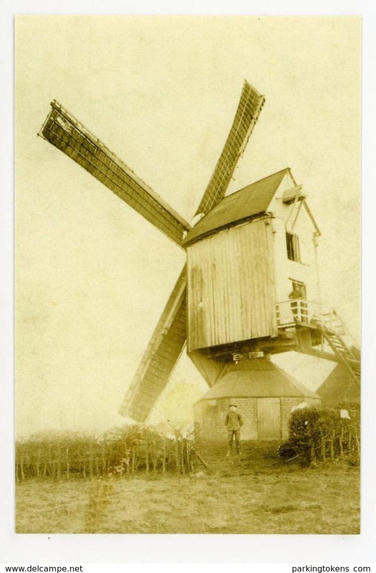 D105 - Zandvliet Spaanse Molen 1924 Afgebroken - Molen - Moulin - Mill - Mühle - België