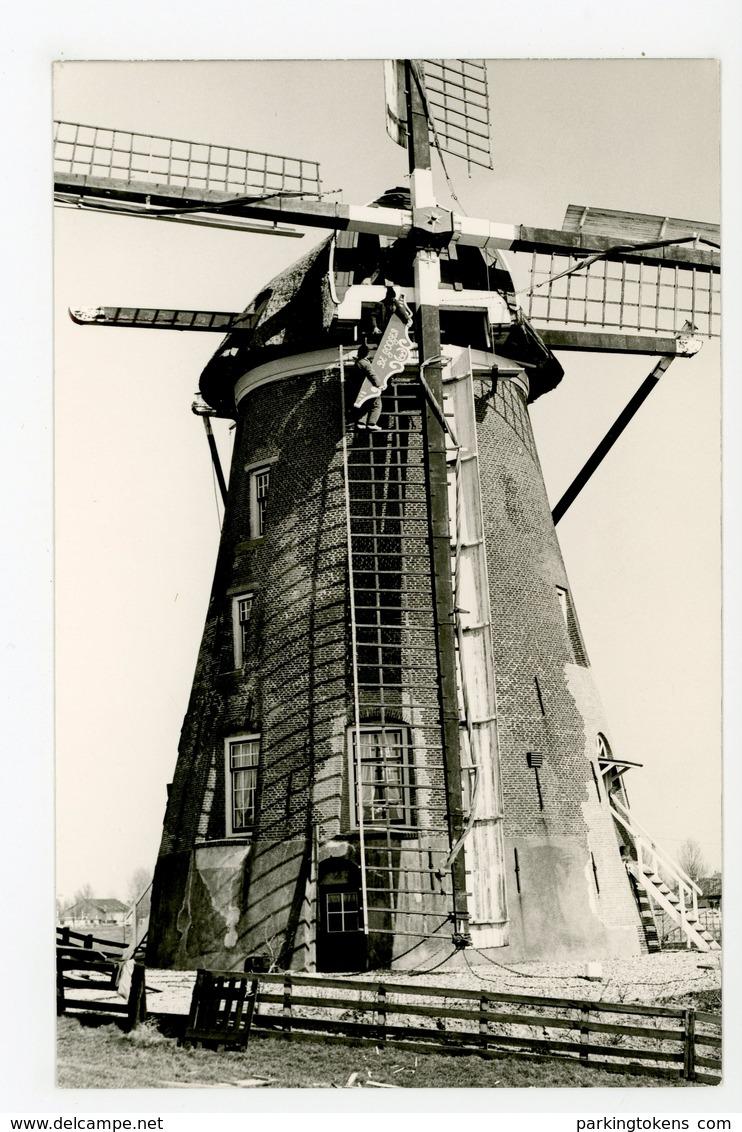 D111 - Roelofarendsveen Googermolen - Molen - Moulin - Mill - Mühle - Nederland