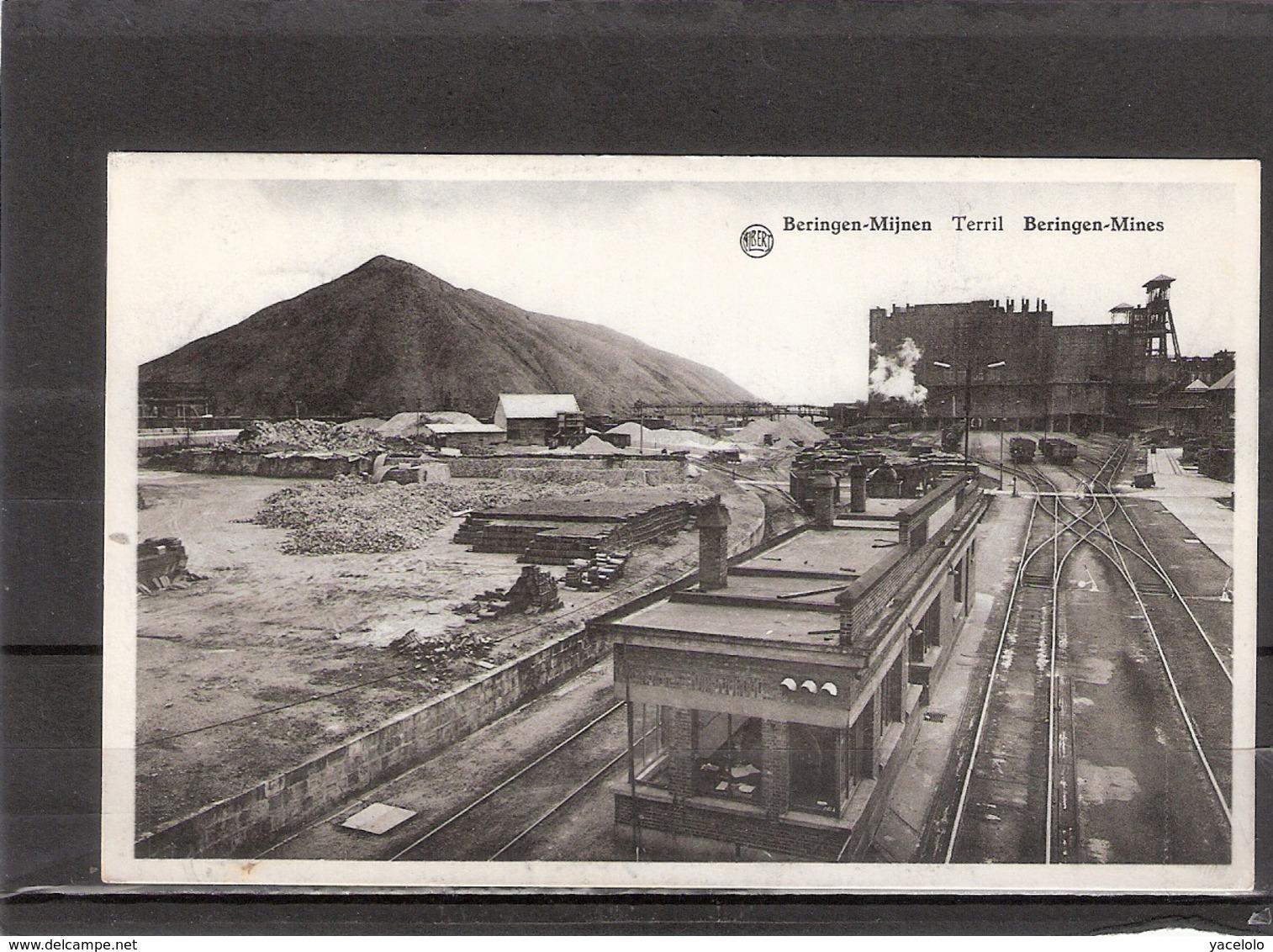 Beringen-Mijnen Terril - Beringen