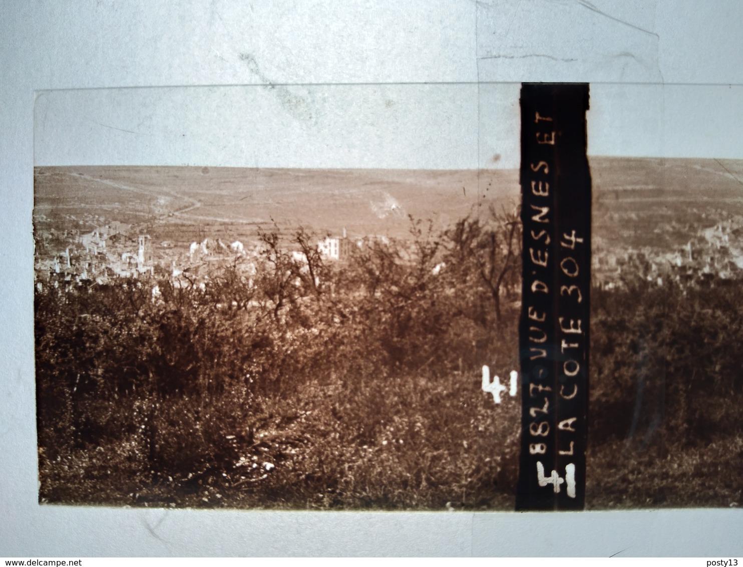Guerre 1914-18 - ESNES (55) - Vue Et La Côte 304 - Plaque De Verre StéréoscopiqueTBE - Glass Slides