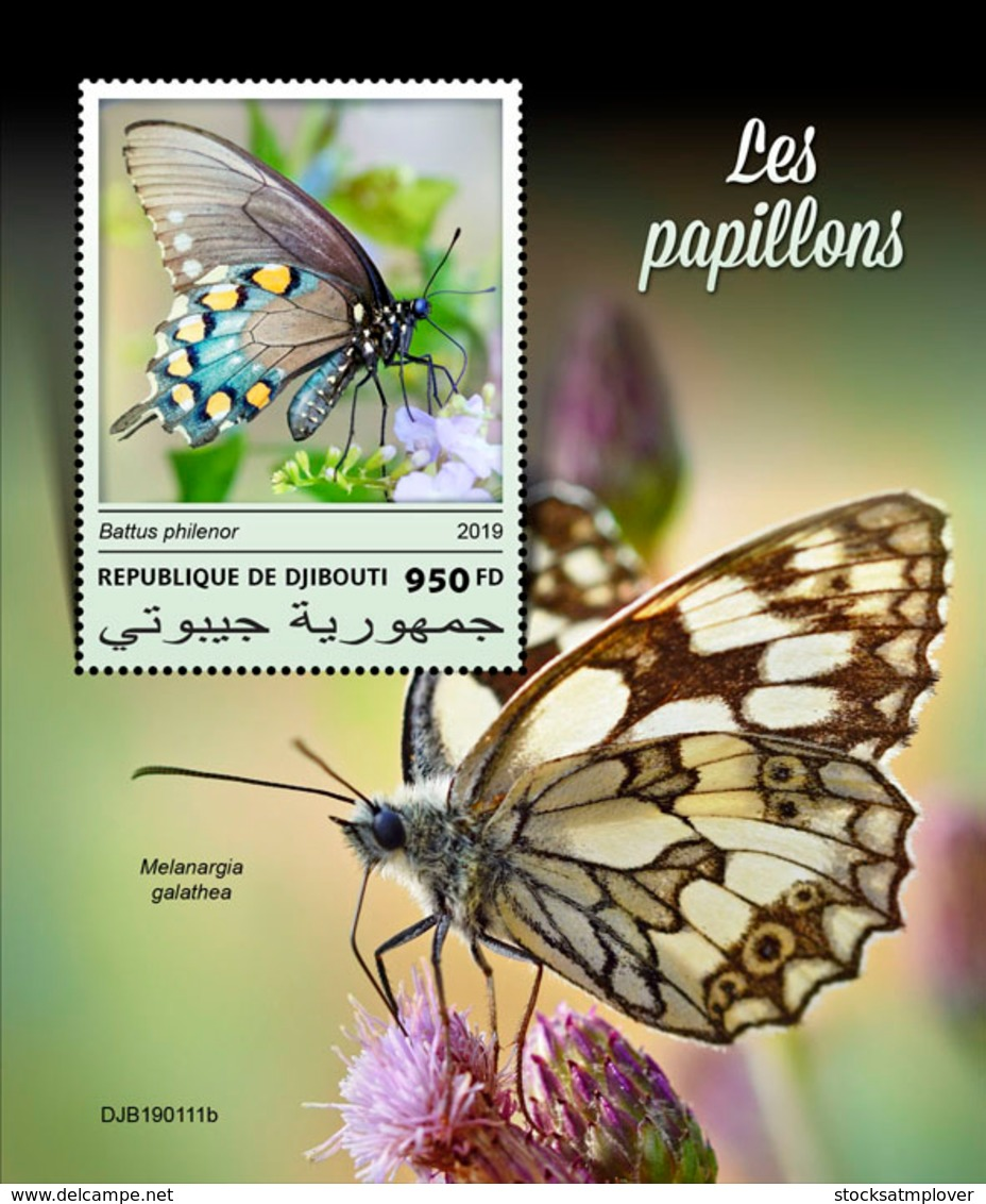 Djibouti 2019  Fauna Butterflies  S201903 - Djibouti (1977-...)