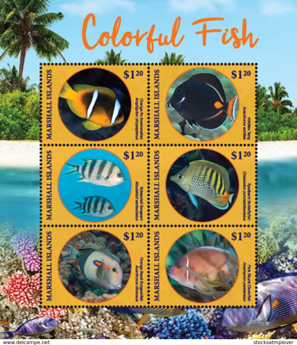 Marshall Islands   2019  Fauna Colorful Fish  I201901 - Marshall