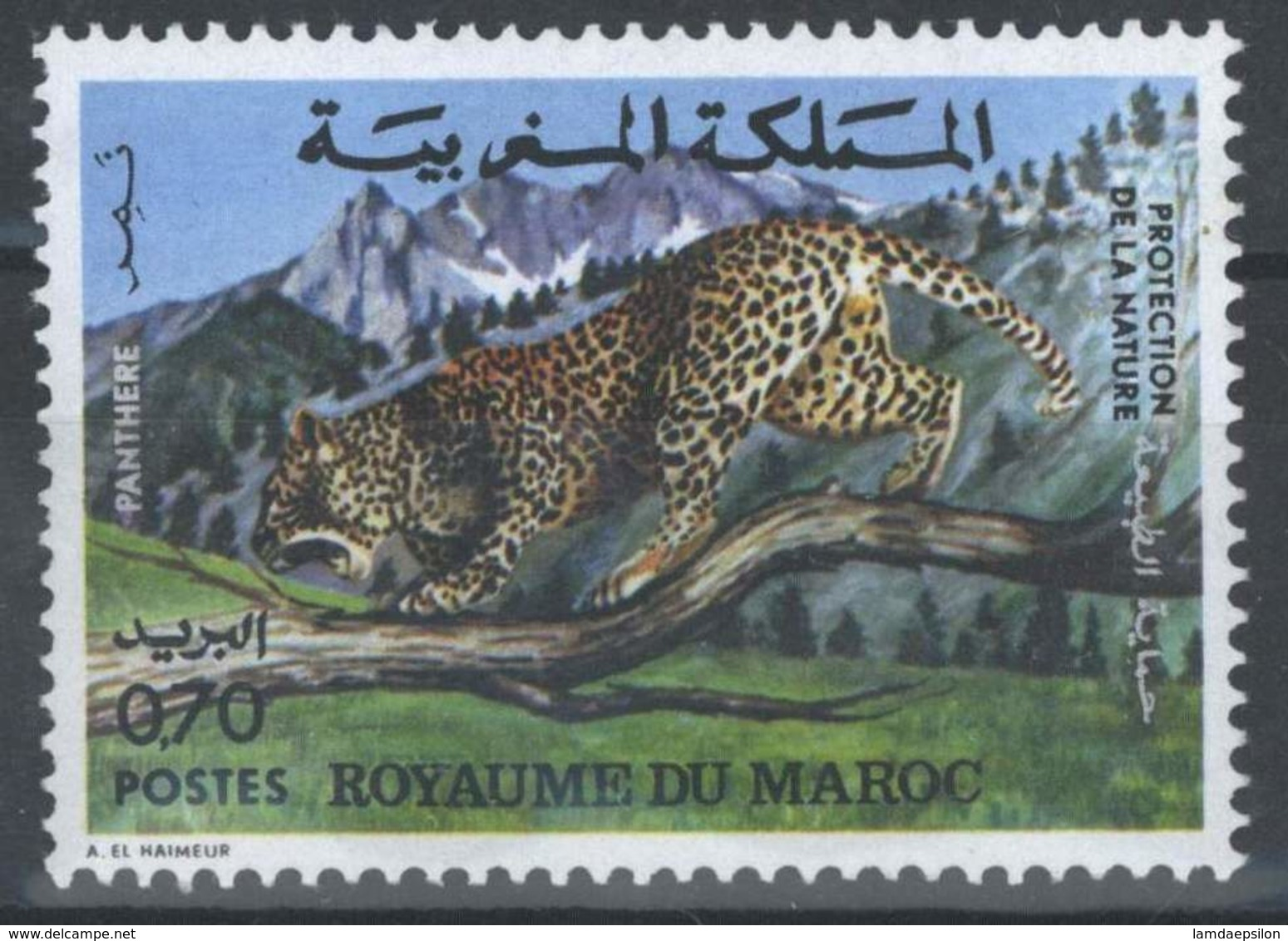 MOROCCO PROTECTION DE LA NATURE FAUNE PANTHERE ANIMALS - Morocco (1956-...)