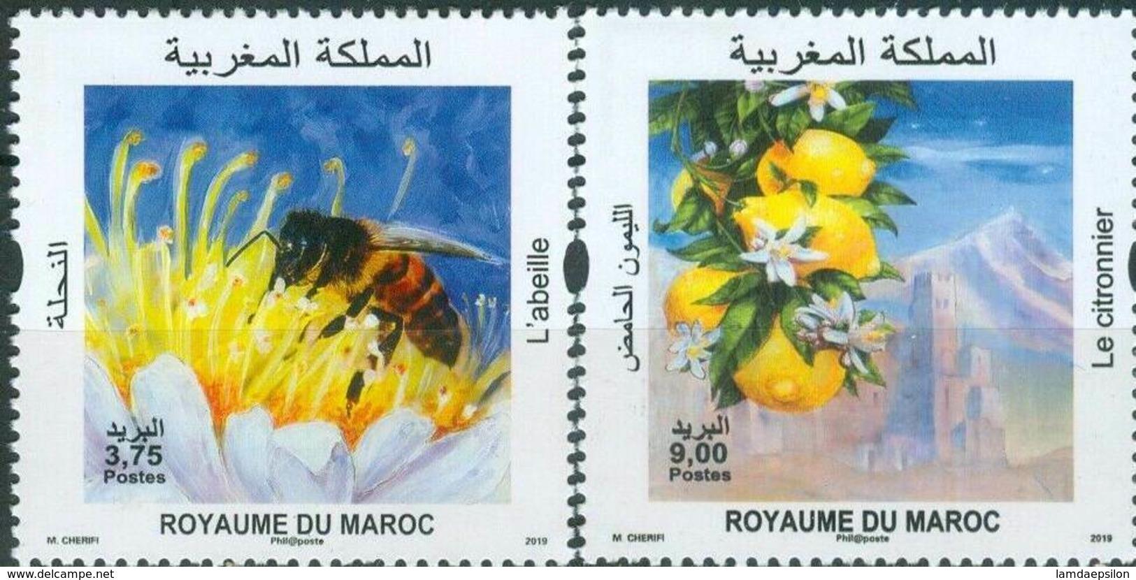 MOROCCO FLORE FLORA FAUNE FAUNA LE CITRONNIER L'ABEILLE 2019 - Morocco (1956-...)