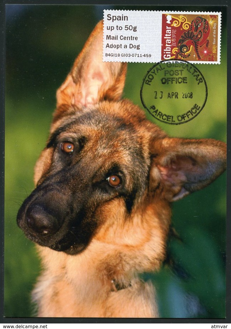 GIBRALTAR (2018). Carte Maximum Card - ATM Post&Go - Mail Centre Adopt A Dog / Year Of The Dog - Chien, Perro, Haushund - Gibraltar