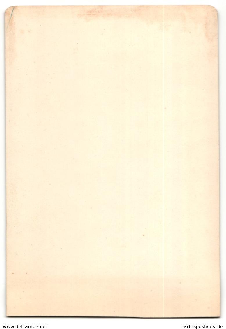 Fotografie G. Sommer, Napoli, Büste Von Unbek. Künstler, Augusto, Vaticano - Sin Clasificación